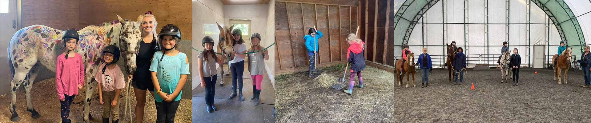 Salt Spring Therapeutic Riding Association Sstra Home Page